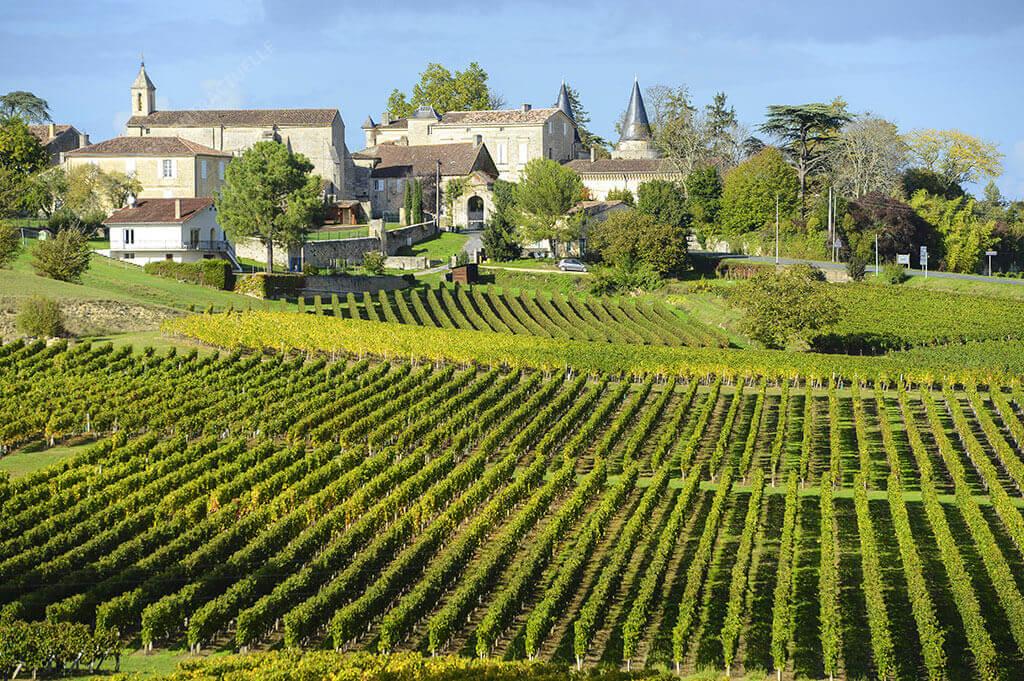N° 1088 – Gironde – Affaire très saine: MIEUX A FAIRE